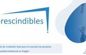 Fundación Sesé fomenta la inserción laboral de las personas con discapacidad intelectual